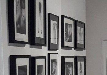 Les artistes illustrateurs de la galerie