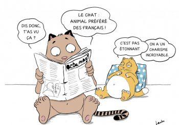 Laulec et les chats de «Miaoù va-t-on ?»